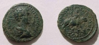 Ancient Coins - Caracalla AE19 of Philippopolis, Thrace. Dionysus riding on back  of  panther r. holding thyrsos. RARE
