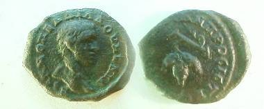 Ancient Coins - Nicopolis ad Istrum.  Bunch of grapes hanging on stalk.Rare and interesting