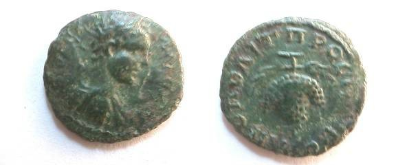 Ancient Coins - Caracalla AE17 of Nikopolis ad Istrum.  Bunch of grapes on filletted stem.