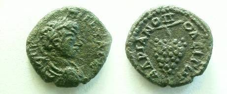 Ancient Coins - Geta AE18 of Hadrianopolis. Bunch of grapes on a stem.