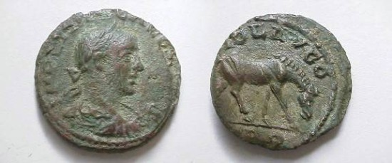 Ancient Coins - Gallienus Æ 20mm of Alexandria Troas.  COL AVG, TRO below, horse grazing right.