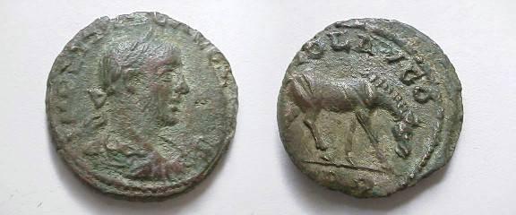 Ancient Coins - Gallienus Æ 20mm of Alexandria Troas.  COL AVG, TRO below, horse grazing right.