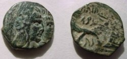 Ancient Coins - Nabataean Kingdom, Aretas IV AE18.  crossed cornucopias, Nabataean inscriptions.