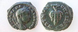 Ancient Coins - Elagabalus AE17 of Markianopolis, Moesia Inferior.  Cluster of grapes.