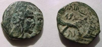 Ancient Coins - Nabataean Kingdom, Aretas IV AE18.  crossed cornucopias, Nabataean inscriptions.