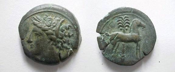 Ancient Coins - Zeugitania, Carthage.  Horse standing right, palm-tree behind.