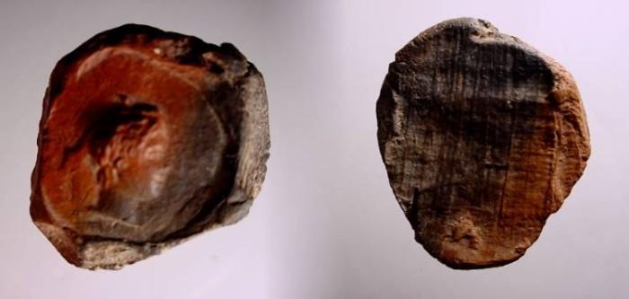 Ancient Coins - Greco - Roman Seal /Choice EF , Circa 50 B.C.- 150 AD.