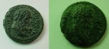 Ancient Coins - Septimius Severus AE18 of Nikopolis ad Istrum. Bearded head of Hercules right.