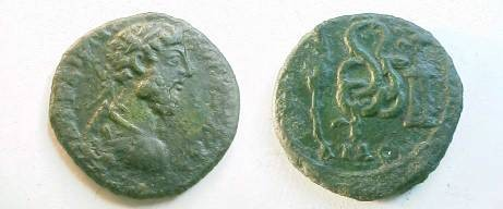 Ancient Coins - Commodus AE23 of Pautalia, Thrace.  Snake, coiled, eating from altar at right, branch to left.