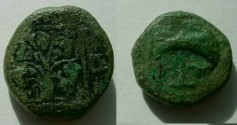Ancient Coins - THRACE, Teres III (347-341), AE20 mm bronze.Vine with bunches of grapes /axe.Rare