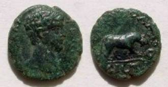 Ancient Coins -   Geta AE17 of Nikopolis ad Istrum., Draped bust right. Panthera  walking r. Unpublished.