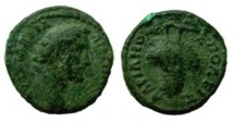 Ancient Coins - Antoninus Pius AE18 of Hadrianopolis. Bunch of grapes on a filleted stem.