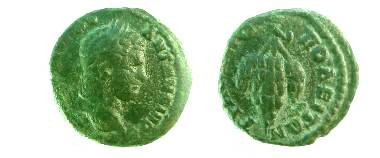 Ancient Coins - Caracalla AE18 of Trajanopolis, Thrace.  Bunch of grapes.