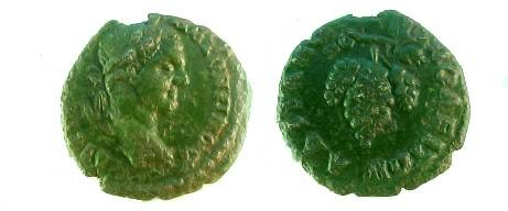 Ancient Coins - Caracalla AE19 of Hadrianopolis.  Bunch of grapes on stem.