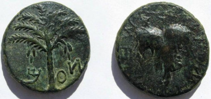 Ancient Coins - Judaea. Bar Kochba Revolt. 132-135, year 3. Middle Bronze, under coin visible