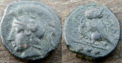 Ancient Coins - Sicily, Kamarina. Circa 410-405 BC. Æ Tetras/ Helmeted head of Athena left/ Owl grasping lizard