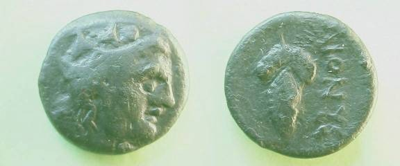 Ancient Coins - Dionysopolis, Moesia Inferior, AE16.  DIONUS, bunch of grapes.