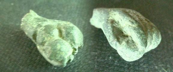 Ancient Coins - Roman bronze statuary fragment of Hercules' hand holding apples. 20mm.