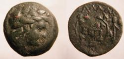 Ancient Coins - Moesia Inferior, Kallatis AE22.ca 3rd-2nd Century BC. Laureate head of  Dionysos' righ