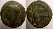 Ancient Coins - Divus Augustus Æ As. Commemorative by Tiberius. Eagle standing facing, wings spread