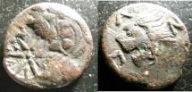 Ancient Coins - Thrace- Pantakapaion AE20-21 304-250 BC Pan w/CM, rv. Lion F+