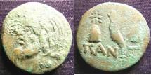 Ancient Coins - Thrace-Pantikapaion  AE16-17 mm Pan/Cornucopiae C.135-125 BC F/VF porosity, Grn patina obv.