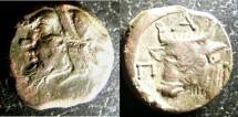 Ancient Coins - Thrace- Pantikapaion  AE-16.5, Late 4th - 3rd C. BC, VF  Pan/Bulls Head
