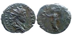 Ancient Coins - Tetricus II - AE Antoninianus - COMES AVG - scarce type - portrait !!