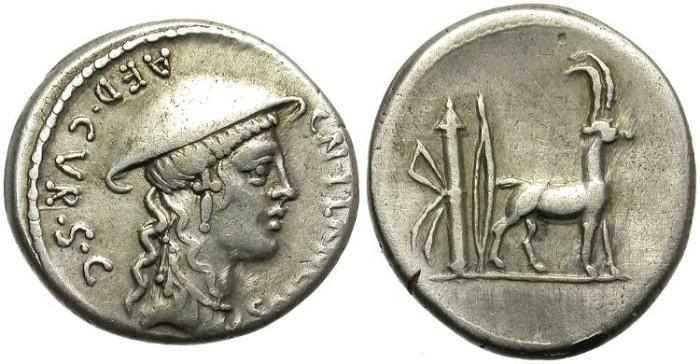 Ancient Coins - ROMAN REPUBLIC.  PLANCIA-1.  AR DENARIUS. GOOD GENERAL CONDITION.