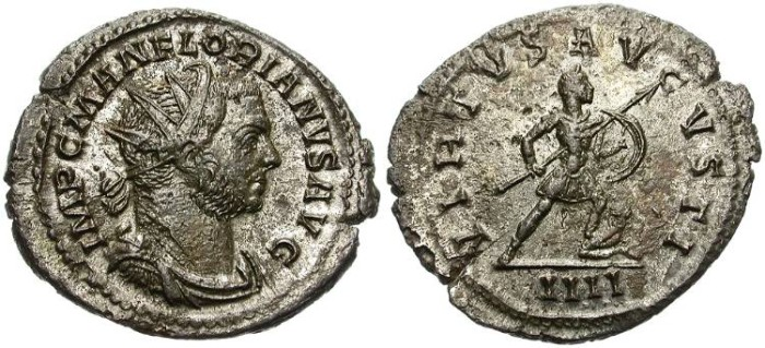Ancient Coins - FLORIAN. BILLON ANTONINIANUS. LUGDUNUM MINT