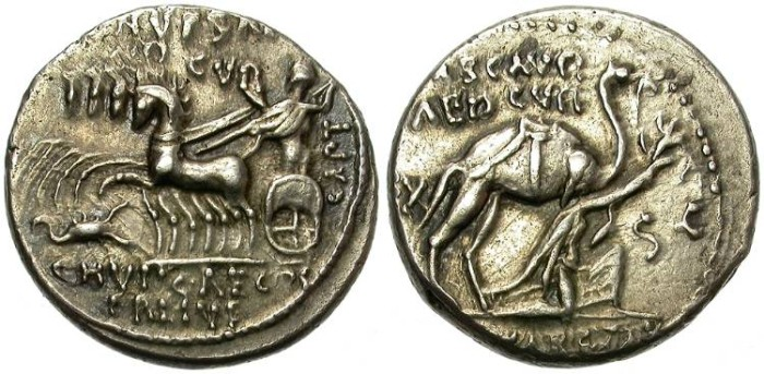 Ancient Coins - ROMAN REPUBLIC,  AEMILIA 8. 58 B.C. SILVER DENARIUS. AFFORDABLE.