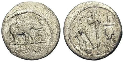 Ancient Coins - IULIUS CAESAR. DENAR. ELEPHANT ISSUE. VERY AFFORDABLE.