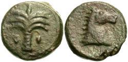 Ancient Coins - Carthage. Æ Unit. Palm Tree / Horse Head.