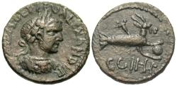Ancient Coins - Mysia, Parium. Severus Alexander. Æ 22 mm. Capricorn.