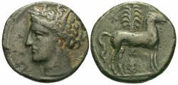 Ancient Coins - Carthage, Zeugitania. Æ 16 mm. Tanit / Horse.
