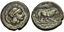 Ancient Coins - Lucania, Velia. Didrachm. Athena / Lion.