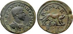 Ancient Coins - Seleucis & Pieria. Laodicea ad Mare. Diadumenian. Æ 32 mm. She Wolf & Twins. RARE!
