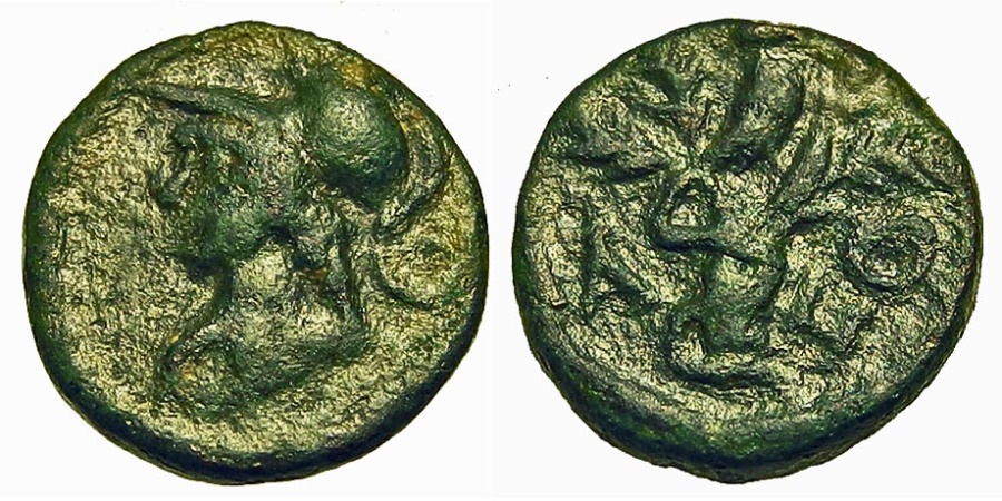 Ancient Coins - Attica, Athens. Pseudo-Autonomous Issue. Æ 12 mm. Athena / Olive Tree with Owl.
