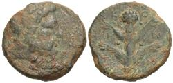 Ancient Coins - Koinon of Kyrenaika. Æ  22 mm. Silphium Plant.