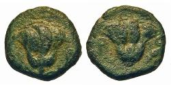 Ancient Coins - Caria, Rhodes. Æ 10 mm. Rose.
