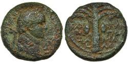 Ancient Coins - Samaria, Neapolis. Domitian. Palm Tree.