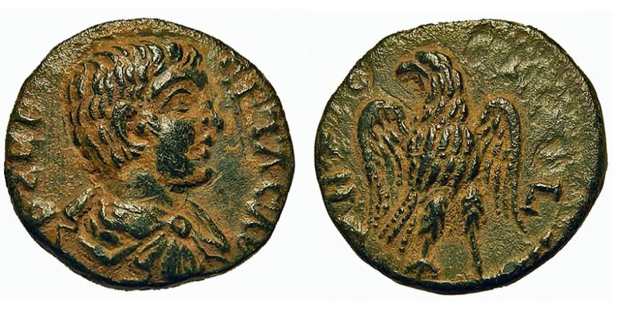 Ancient Coins - Pisidia, Antioch. Geta. Eagle, Wings Spread. Choice.