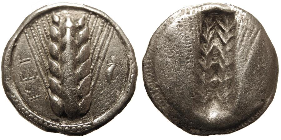 Ancient Coins - Lucania, Metapontum. AR Nomos. Ear of Barley.