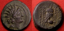 Ancient Coins - ANTIOCHUS VIII & CLEOPATRA THEA AE 20. 125-121 BC. Owl perched on amphora