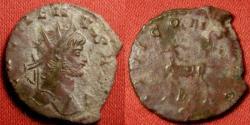Ancient Coins - GALLIENUS AE antoninianus. IOVI CONS AVG, goat/stag walking left.