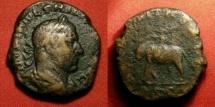 Ancient Coins - PHILIP I THE ARAB AE sestertius. AETERNITAS AVGG, Elephant & rider. Very scarce.