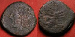 Ancient Coins - ROMAN REPUBLIC AE as. Laureate Janus, prow of ship facing right, dolphin above. 30mm, 21.2g.