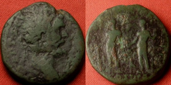Ancient Coins - SEPTIMIUS SEVERUS AE as. DIS AVSPICIB, hercules & Bacchus standing, panther between them. Rare.