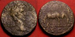 Ancient Coins - NERVA AE sestertius. VEHICULATIONE ITALIA REMISSA, two grazing mules. Commemorating the remission of the 'postal' tax. Rare
