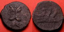 Ancient Coins - C VIBIUS PANSA AE as. Circa 90 BC. TRIPLE prow right, head of Janus. Scarce.
